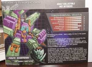 BotCon 2014 Transformers Pirates vs Knights Exclusives - Bios and Tech Specs