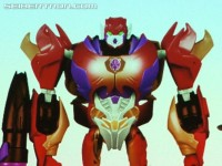Transformers News: BotCon 2013 News: Hasbro Brand, TFCC and Rescue Bots Gallery