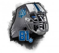 Transformers News: Detroit Lions' Calvin Johnson.  NFL's Megatron