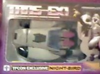 Transformers News: TFcon 2010 Night-bird Video Review