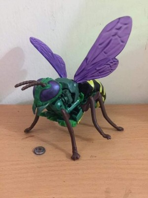 Possible Look At Transformers Kingdom Deluxe Class Waspinator