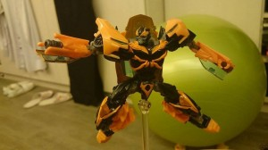 Evolution Of Bumblebee In Hand Images