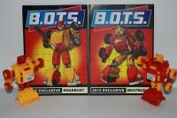 Transformers News: Final update: B.O.T.S. 2012 was a huge success!