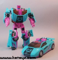Transformers News: First Looks at 2010 Botcon Exclusive Breakdown