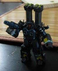 PE-01 Shadow Warrior Pictorial Review