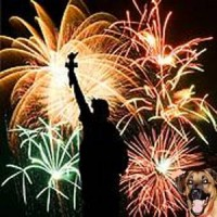 Happy 4th of July Seibertronians!!!