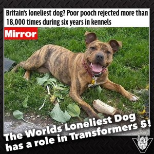 Transformers: The Last Knight - UK's 'Loneliest Dog' Freya Joins the Cast