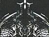 Transformers News: First Look at New ROTF Legends Starscream, Ratchet, Megatron & Sideswipe
