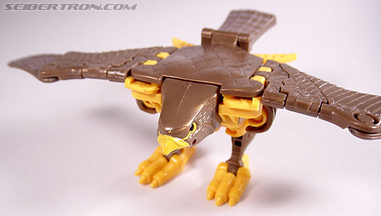 Transformers Beast Wars Airazor (Image #28 of 99)