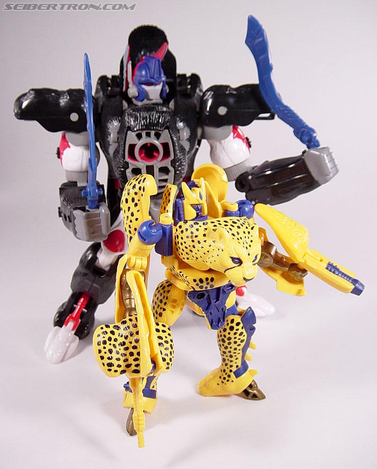 Transformers Beast Wars Cheetor (Chiitas) (Image #83 of 91)