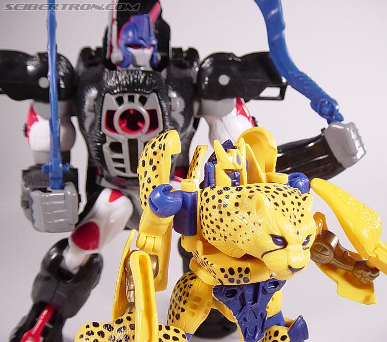 Transformers Beast Wars Cheetor (Chiitas) (Image #84 of 91)