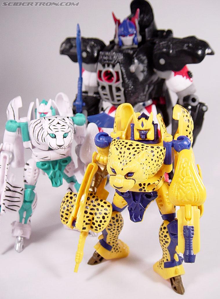Transformers Beast Wars Cheetor (Chiitas) (Image #86 of 91)