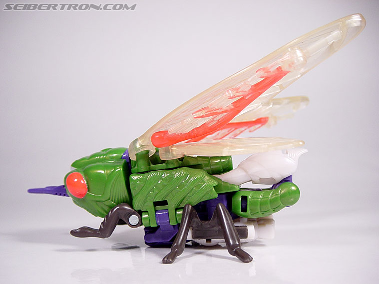 Transformers Beast Wars Cicadacon (D.J.) (Image #8 of 44)