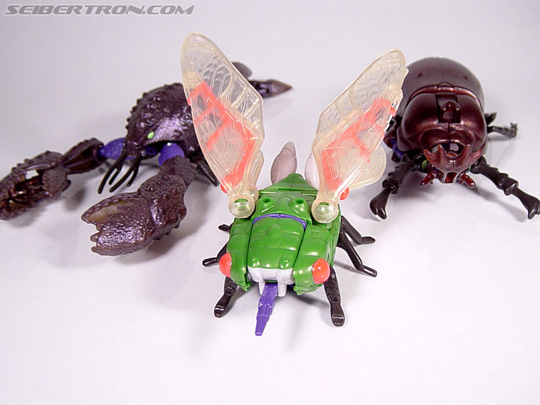 Transformers Beast Wars Cicadacon (D.J.) (Image #12 of 44)