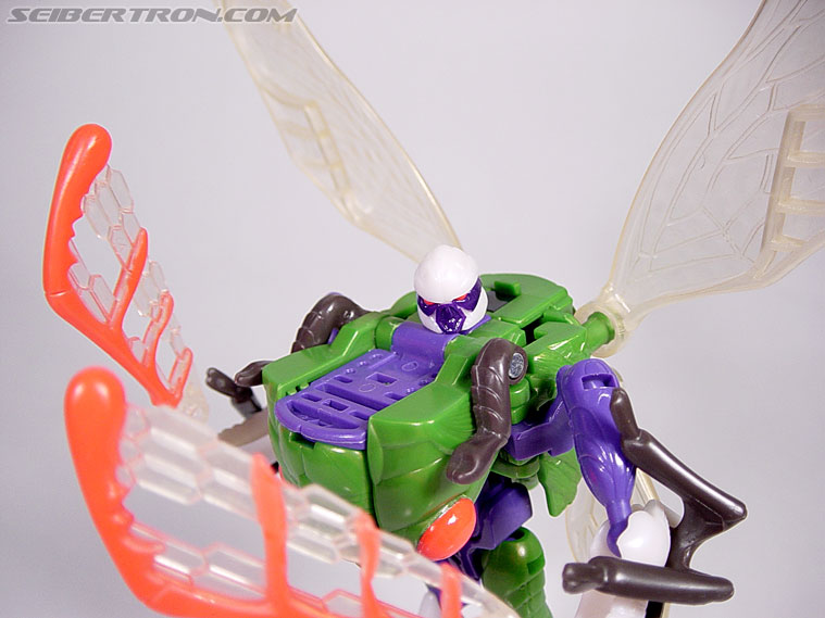 Transformers Beast Wars Cicadacon (D.J.) (Image #31 of 44)