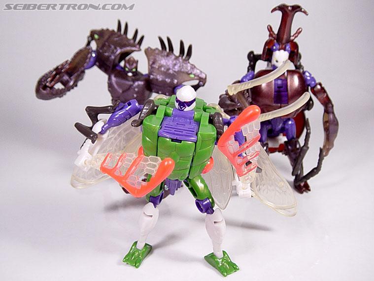 Transformers Beast Wars Cicadacon (D.J.) (Image #41 of 44)