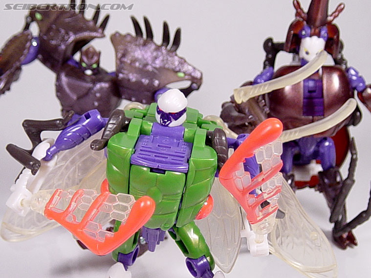 Transformers Beast Wars Cicadacon (D.J.) (Image #42 of 44)