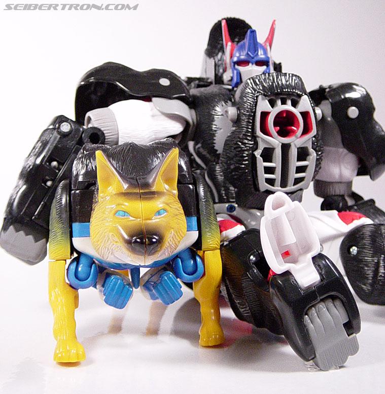 Transformers Beast Wars K-9 (Max-B) (Image #22 of 62)