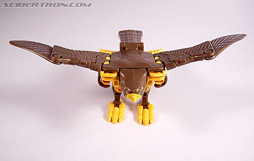 Transformers Beast Wars Airazor (Image #13 of 99)