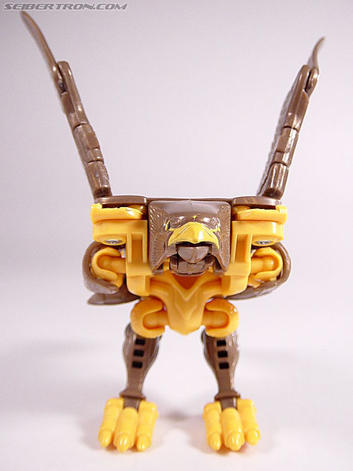Transformers Beast Wars Airazor (Image #15 of 99)