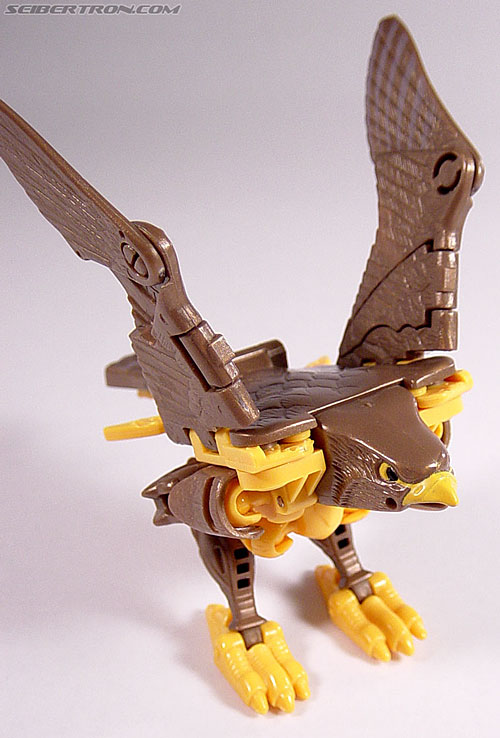 Transformers Beast Wars Airazor (Image #16 of 99)