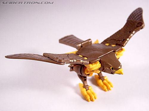 Transformers Beast Wars Airazor (Image #17 of 99)