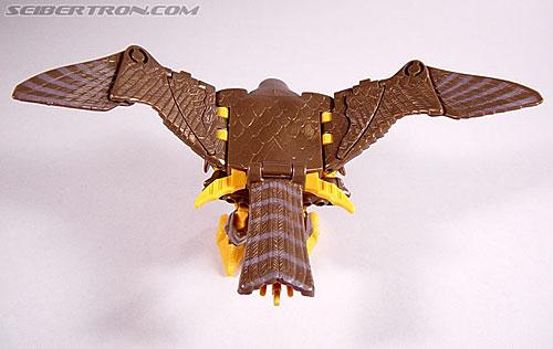 Transformers Beast Wars Airazor (Image #20 of 99)