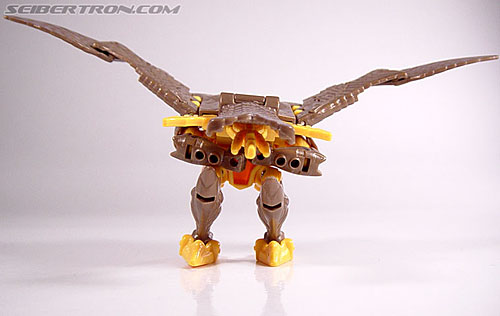 Transformers Beast Wars Airazor (Image #21 of 99)