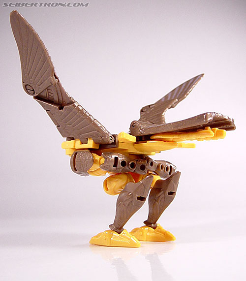 Transformers Beast Wars Airazor (Image #22 of 99)