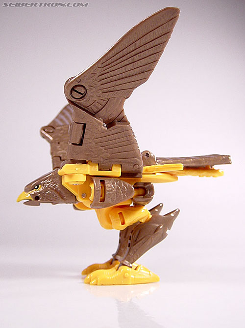 Transformers Beast Wars Airazor (Image #23 of 99)