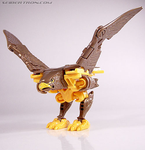 Transformers Beast Wars Airazor (Image #24 of 99)
