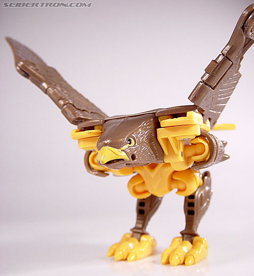 Transformers Beast Wars Airazor (Image #26 of 99)