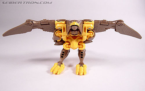 Transformers Beast Wars Airazor (Image #32 of 99)
