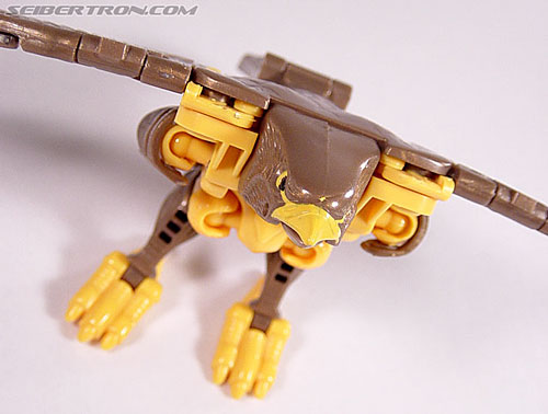 Transformers Beast Wars Airazor (Image #33 of 99)