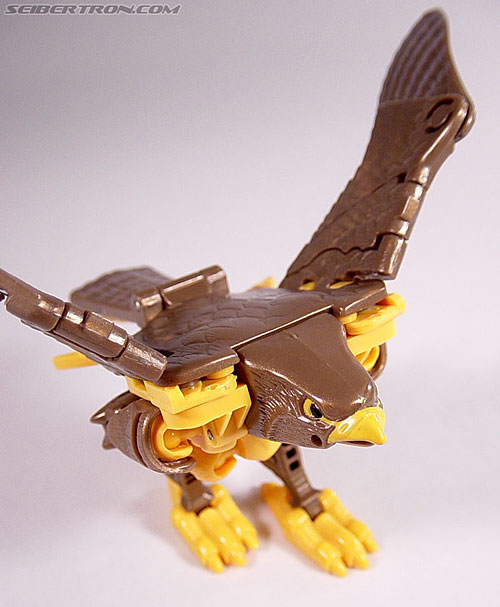 Transformers Beast Wars Airazor (Image #34 of 99)