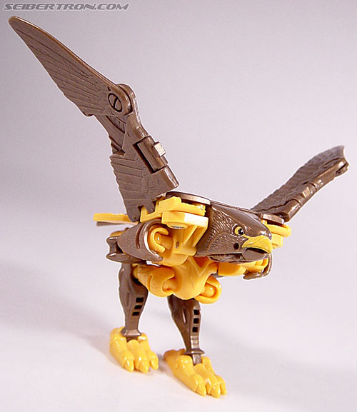 Transformers Beast Wars Airazor (Image #35 of 99)