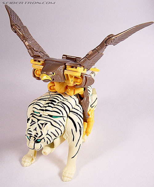 Transformers Beast Wars Airazor (Image #37 of 99)