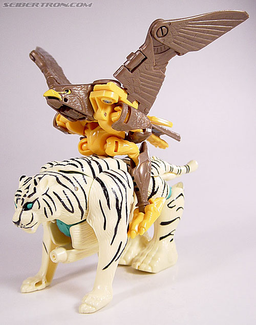 Transformers Beast Wars Airazor (Image #38 of 99)