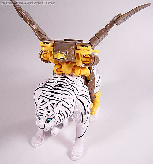 Transformers Beast Wars Airazor (Image #39 of 99)