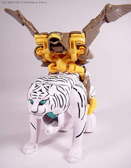 Transformers Beast Wars Airazor (Image #40 of 99)
