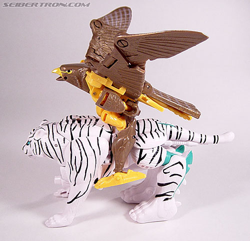 Transformers Beast Wars Airazor (Image #42 of 99)
