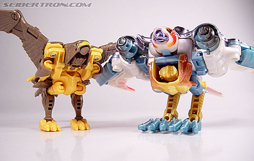 Transformers Beast Wars Airazor (Image #44 of 99)