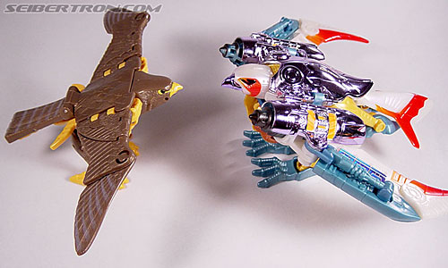 Transformers Beast Wars Airazor (Image #45 of 99)