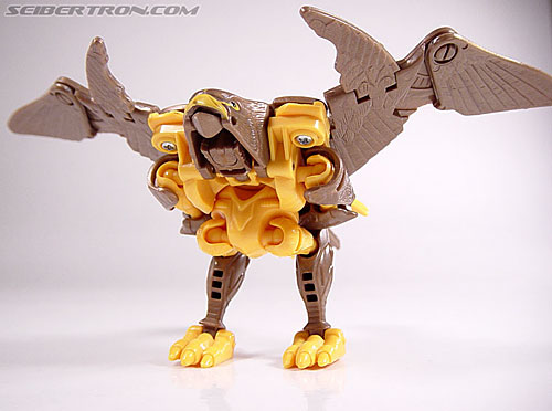 Transformers Beast Wars Airazor (Image #46 of 99)