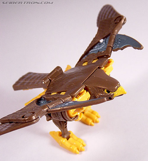 Transformers Beast Wars Airazor (Image #47 of 99)