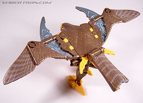 Transformers Beast Wars Airazor (Image #50 of 99)