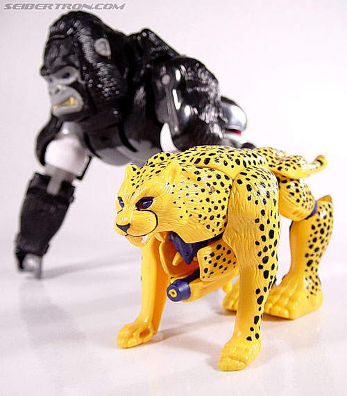 Transformers Beast Wars Cheetor (Chiitas) (Image #31 of 91)