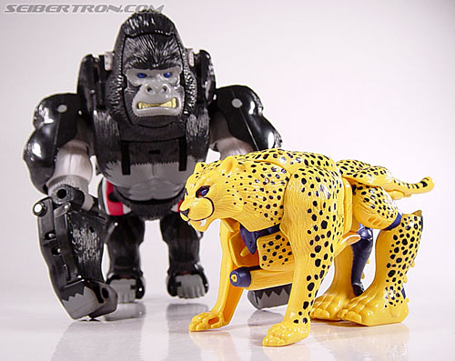Transformers Beast Wars Cheetor (Chiitas) (Image #32 of 91)