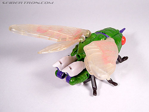 Transformers Beast Wars Cicadacon (D.J.) (Image #5 of 44)
