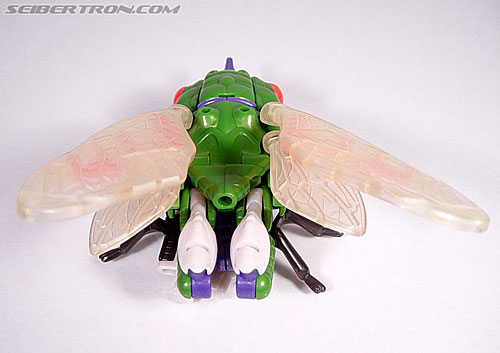 Transformers Beast Wars Cicadacon (D.J.) (Image #6 of 44)